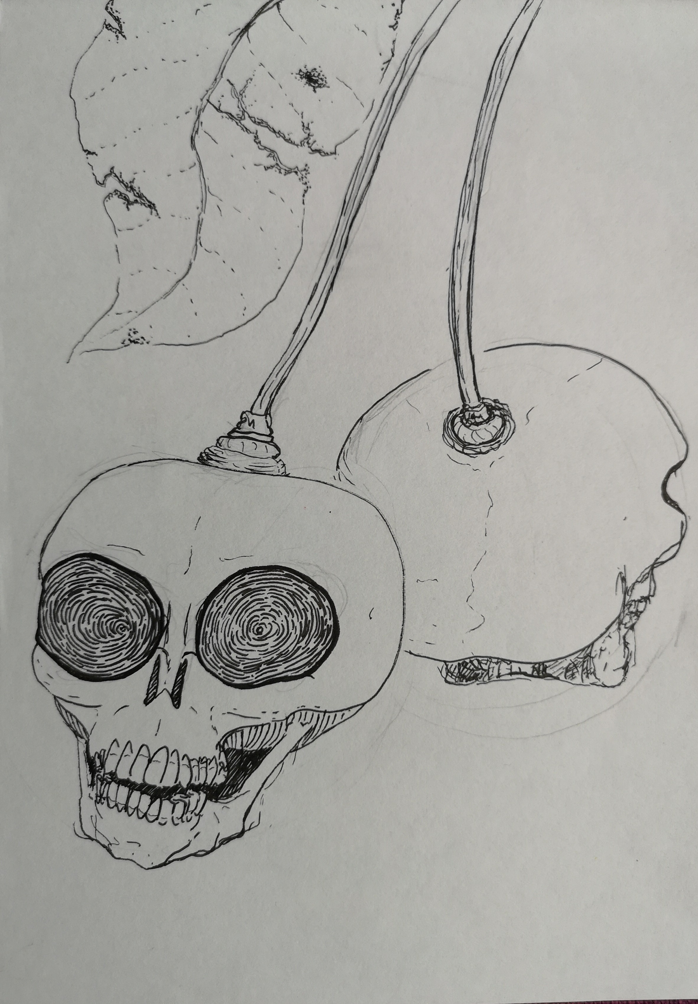 drawings skulls cherries